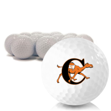 Blank Campbell Fighting Camels Golf Balls