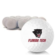 Blank Florida Tech Panthers Golf Balls