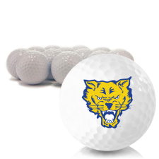 Blank Fort Valley State Wildcats Golf Balls