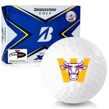 Bridgestone Tour B XS Williams College Ephs Golf Balls