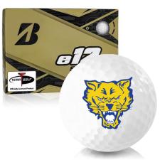 Bridgestone e12 Soft Fort Valley State Wildcats Golf Balls