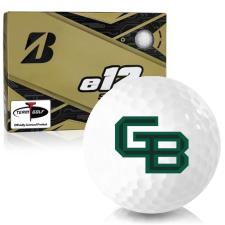 Bridgestone e12 Soft Wisconsin Green Bay Phoenix Golf Balls