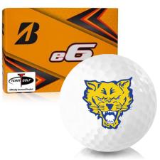 Bridgestone e6 Fort Valley State Wildcats Golf Balls