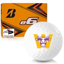 Bridgestone e6 Williams College Ephs Golf Balls