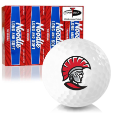 Taylor Made Noodle Long and Soft Tampa Spartans Golf Balls