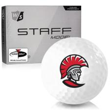 Wilson Staff Staff Model Tampa Spartans Golf Balls