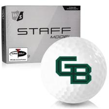 Wilson Staff Staff Model Wisconsin Green Bay Phoenix Golf Balls