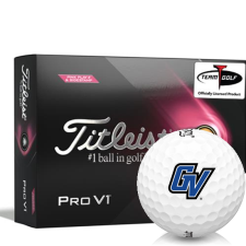 Titleist 2021 Pro V1 Pink Play & Sidestamp Grand Valley State Lakers Golf Balls
