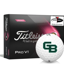 Titleist 2021 Pro V1 Pink Play & Sidestamp Wisconsin Green Bay Phoenix Golf Balls