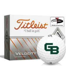 Titleist Velocity Wisconsin Green Bay Phoenix Golf Balls