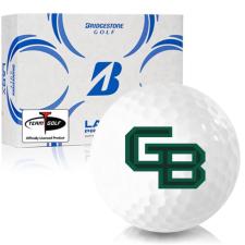 Bridgestone Lady Precept Wisconsin Green Bay Phoenix Golf Ball