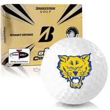 Bridgestone e12 Contact Fort Valley State Wildcats Golf Balls