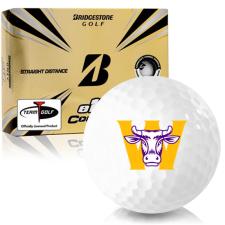 Bridgestone e12 Contact Williams College Ephs Golf Balls